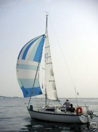 Aloa 23 R Image